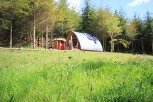 Devon Dens Cabin in the Woods