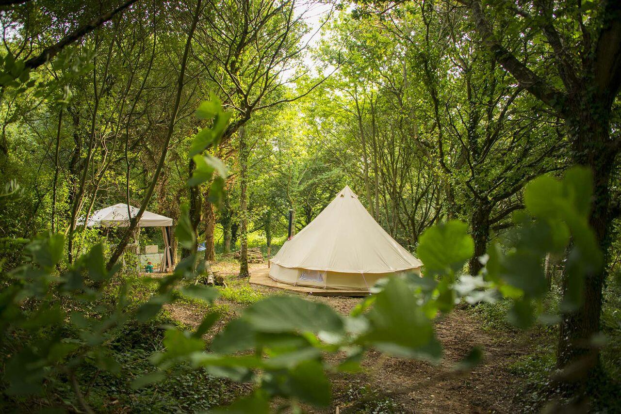 Just Us Retreats woodland glade
