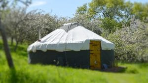 Russet the yurt at Orchard Retreat